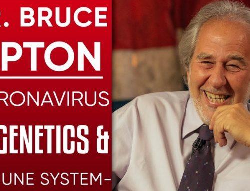 Covid-19: Ventilators & Breathwork. Dr. Bruce Lipton