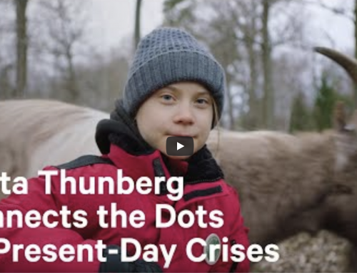 Greta Thunberg – Your Health & The Planet's Are One and the Same